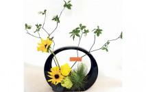 古い記事: 父の日には明るい花を | Mstyleの花あそび/6月