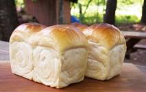 古い記事: パンの劣化原因は冷蔵庫保存にあり | パンにまつわる耳より話