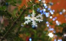 古い記事: 心躍る♪クリスマスグッズをPick up!