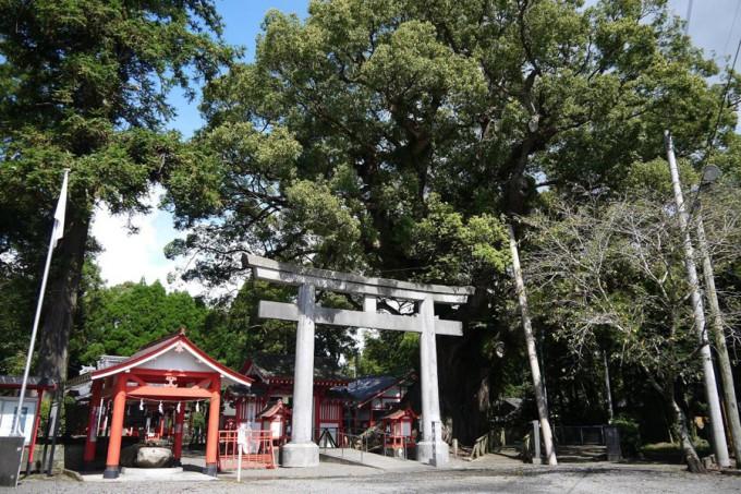 (写真提供:山宮神社)