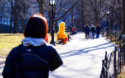 セントラルパークで黄色いモノめっけ!!