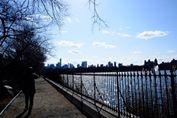 NY セントラルパーク