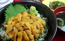 古い記事: 阿久根うに丼祭り | 1食にウニを80g以上使う名物イベント