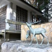 鹿の角が1万本以上納められているお堂(志賀海神社)