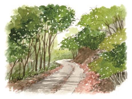 錫山自然遊歩道イラスト