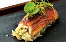 古い記事: 鰻の蒲焼きとリゾーニの黒酢握り | 黒酢の達人レシピ