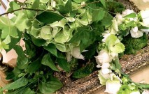 古い記事: 花嫁のブーケ。幸せを祈り、心を込めて作ります | 街のお花屋