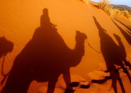 砂丘に映し出される影が、たそがれ感を出してるざ~ます
