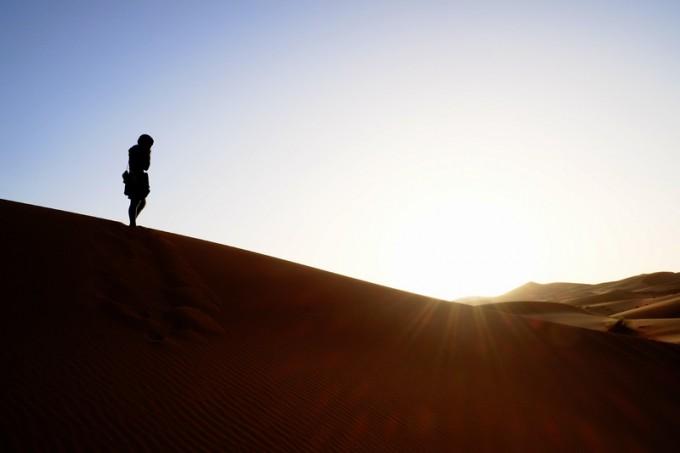 朝日に映し出される避暑地のマダム。美しい・・