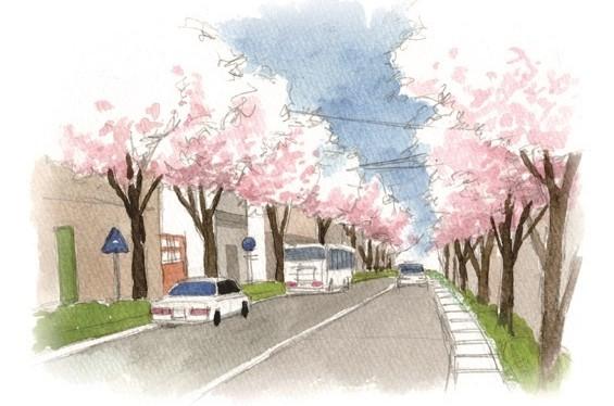 桜並木イラスト
