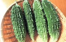 古い記事: ゴーヤーは夏バテ防止のA級食材 | 鹿児島スローフード探訪