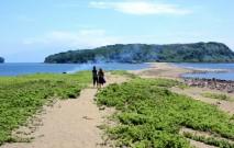 古い記事: 知林ケ島 | 縁結びの島と評判。カップルで行きたい(指宿市)