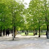 パリ。どこかの公園にて