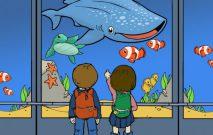 古い記事: AT KAGOSHIMA AQUARIUM(鹿児島水族館にて