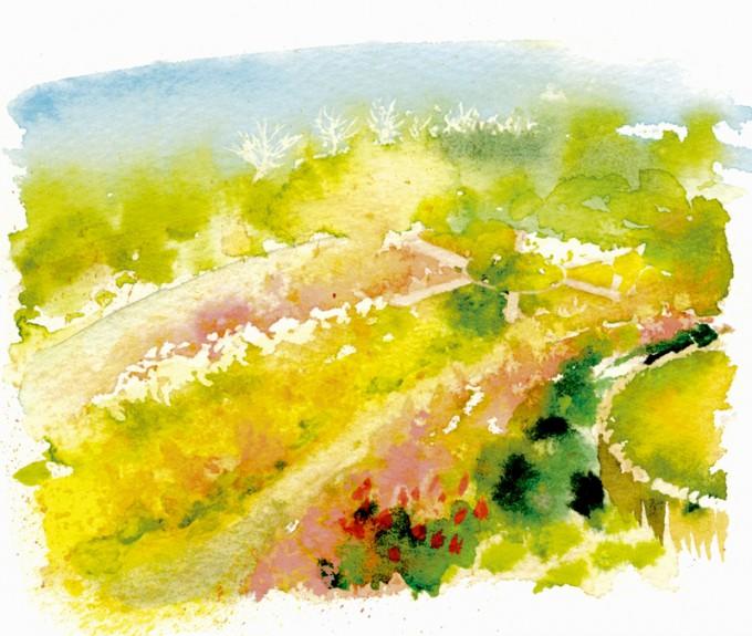 花フェスタの主会場「サンセットの丘」  イラスト:張 佐和子