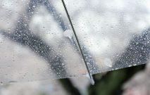 古い記事: レイングッズ人気TOP3。梅雨を楽しく乗り切ろう~