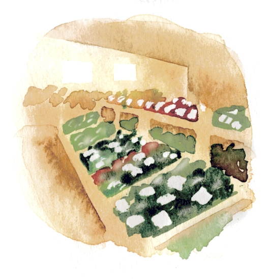 道の駅川辺やすらぎの郷で販売する寄せ豆腐イラスト