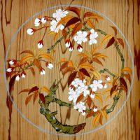 桜の屋形 天井の蒔絵
