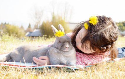 古い記事: 動物を引き合いに出す孫が…/ちびっ子たちの『むじょか』話