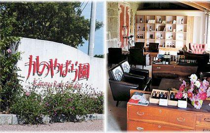 古い記事: かのやばら園 | 児玉醸造 石蔵直売所/バリアフリースポット