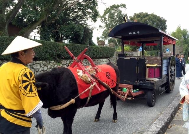 牛車に乗って観光