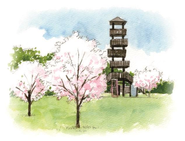 城山(じょう やま)公園イラスト
