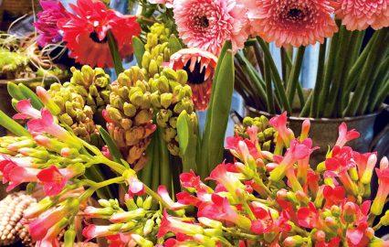 古い記事: 春を運ぶ花の香りに包まれる | 街のお花屋さん