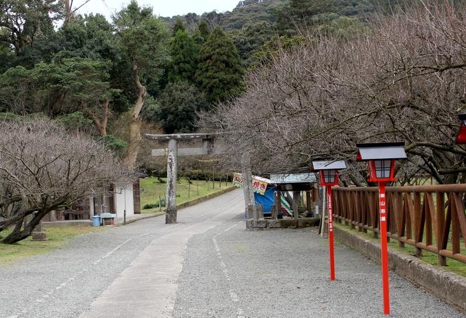 藤川天神の参道