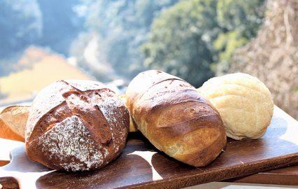 古い記事: ベーカリー&カフェ ひまわり | アレルギーにも対応(鹿児島