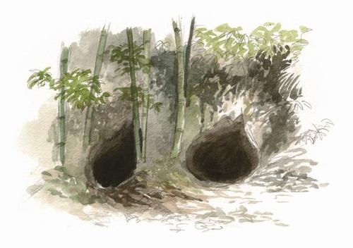雀ケ宮のかくれ念仏洞穴イラスト