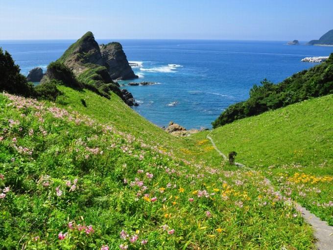 鳥ノ巣山展望所とカノコユリ