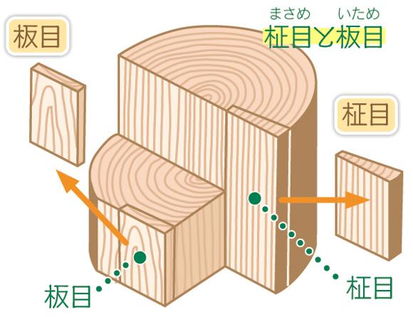 柾目と板目の説明
