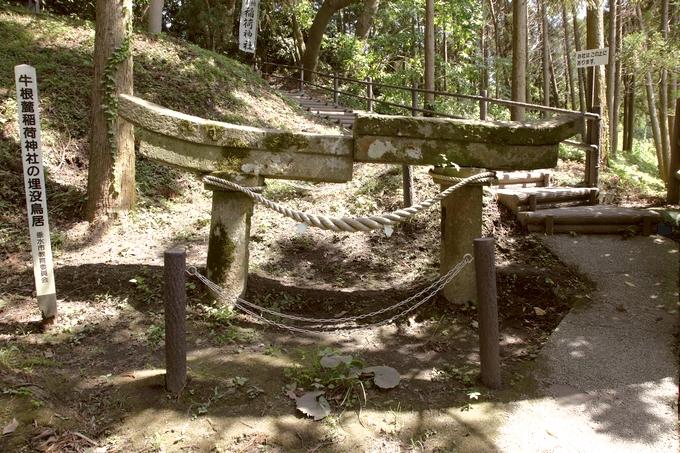 牛根麓・稲荷麓神社の埋没鳥居