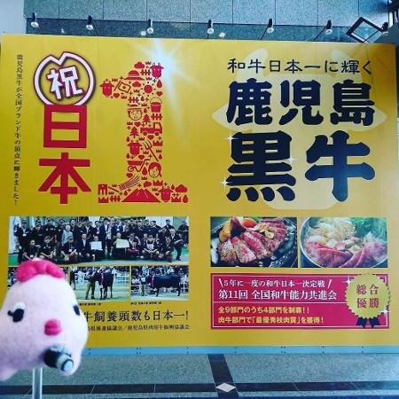 鹿児島和牛日本一を祝うポスター