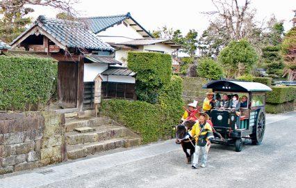 古い記事: 西郷も泊まった!?江戸時代の面影を残す出水麓武家屋敷群 |