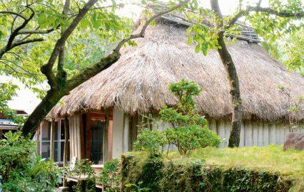 古い記事: 西郷隆盛が愛妻・愛加那と共に過ごした奄美・龍郷を巡る | 西
