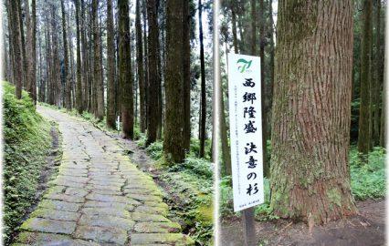古い記事: 「決意の杉」のある西郷どんロケ地・姶良市龍門司坂 | 西郷旅