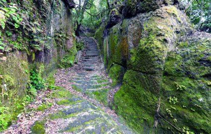 古い記事: 隼人城跡 | 思いをはせて城跡巡り(霧島市国分)