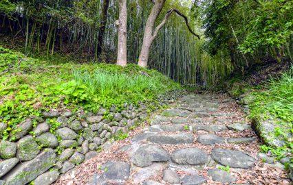 古い記事: 堂崎城跡 | 思いをはせて城跡巡り(出水郡長島町)
