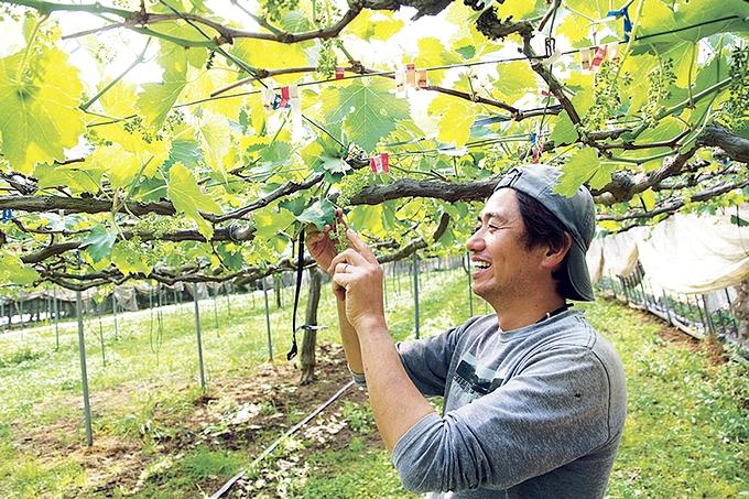 クラシックブドウ浜田農園代表・濵田隆介さん