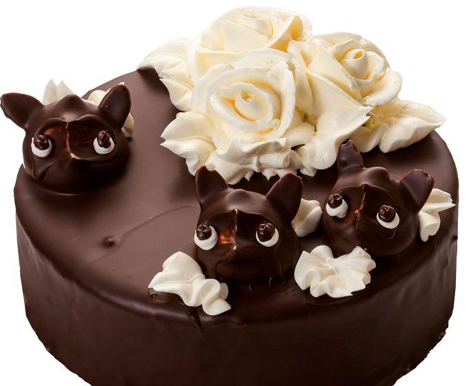 たぬきケーキを使ったデコレーションケーキ