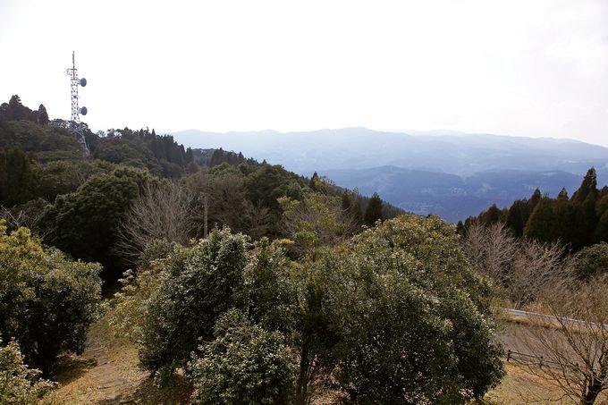 白鹿岳森林公園