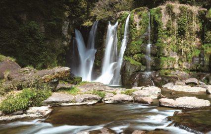 古い記事: 桐原の滝   清涼感あふれるパワースポットで癒やしを(財部町