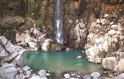 古い記事: 千里ケ滝 | 清涼感あふれるパワースポットで癒やしを(霧島市