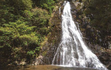 古い記事: 八瀬尾の滝 | 清涼感あふれるパワースポット(南九州市川辺)