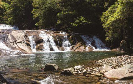古い記事: 轟の滝 | 清涼感あふれるパワースポットで癒やしを(肝付町)