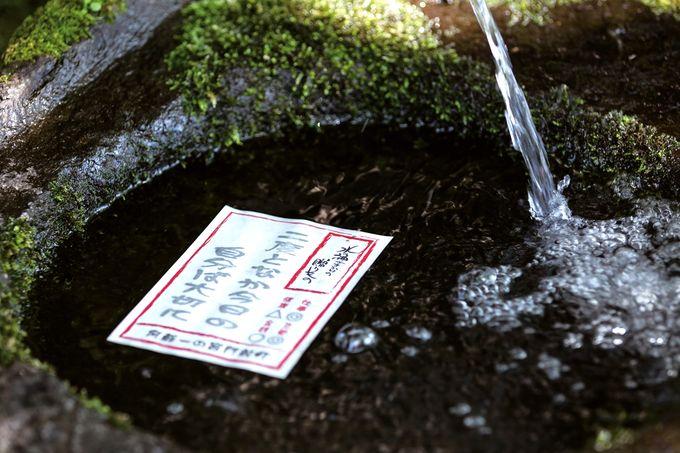 御神水おみくじを「文豪の水」に浸す