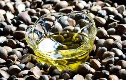 古い記事: つばき油は、美と健康を守り続ける天然オイルなのだ