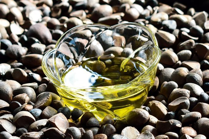 日本人の美と健康を守り続けるつばき油