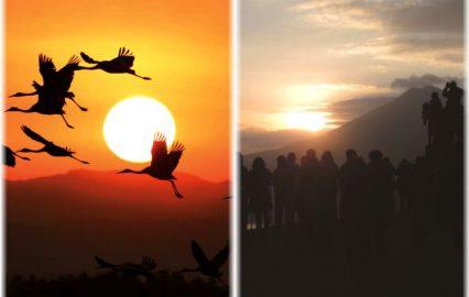 古い記事: 鹿児島の初日の出スポットはココで決まり!おすすめスポット7選
